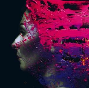 Steven Wilson Hand. Cannot. Erase