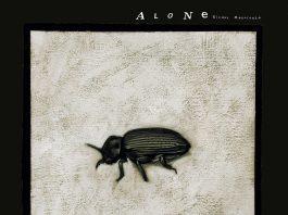 Gianni Maroccolo - Alone Vol. IV